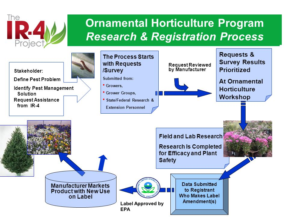 Request Reviewed by Manufacturer Requests & Survey Results Prioritized At Ornamental Horticulture Workshop Field and Lab Research Research Is Completed for Efficacy and Plant Safety Manufacturer Markets Product with New Use on Label Label Approved by EPA Data Submitted to Registrant Who Makes Label Amendment(s) The Process Starts with Requests /Survey Submitted from: Growers, Grower Groups, State/Federal Research & Extension Personnel Stakeholder: Define Pest Problem Identify Pest Management Solution Request Assistance from IR-4 Ornamental Horticulture Program Research & Registration Process