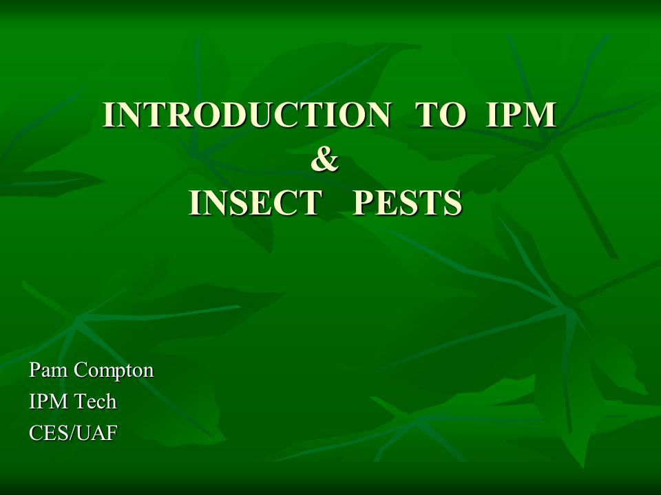 INTRODUCTION TO IPM & INSECT PESTS INTRODUCTION TO IPM & INSECT PESTS Pam Compton IPM Tech CES/UAF