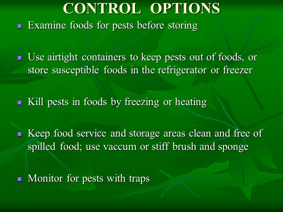 CONTROL OPTIONS Examine foods for pests before storing Examine foods for pests before storing Use airtight containers to keep pests out of foods, or store susceptible foods in the refrigerator or freezer Use airtight containers to keep pests out of foods, or store susceptible foods in the refrigerator or freezer Kill pests in foods by freezing or heating Kill pests in foods by freezing or heating Keep food service and storage areas clean and free of spilled food; use vaccum or stiff brush and sponge Keep food service and storage areas clean and free of spilled food; use vaccum or stiff brush and sponge Monitor for pests with traps Monitor for pests with traps