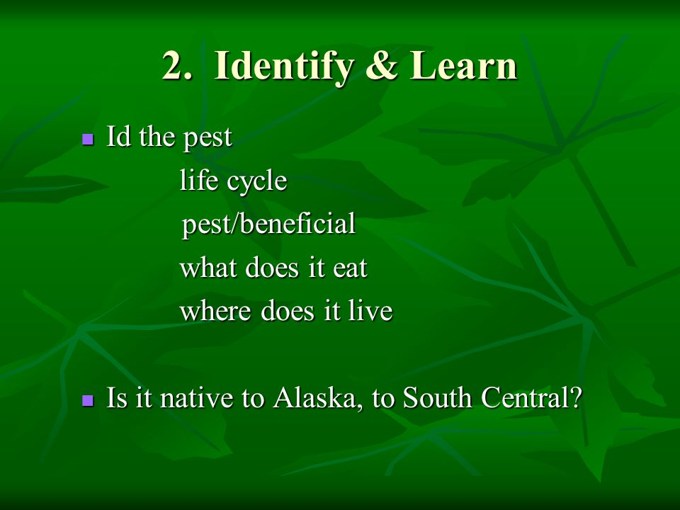 2. Identify & Learn Id the pest Id the pest life cycle life cycle pest/beneficial pest/beneficial what does it eat what does it eat where does it live