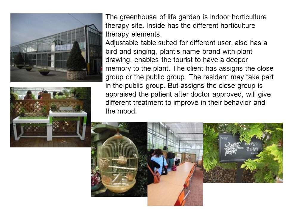 The greenhouse of life garden is indoor horticulture therapy site. Inside has the different horticulture therapy elements. Adjustable table suited for