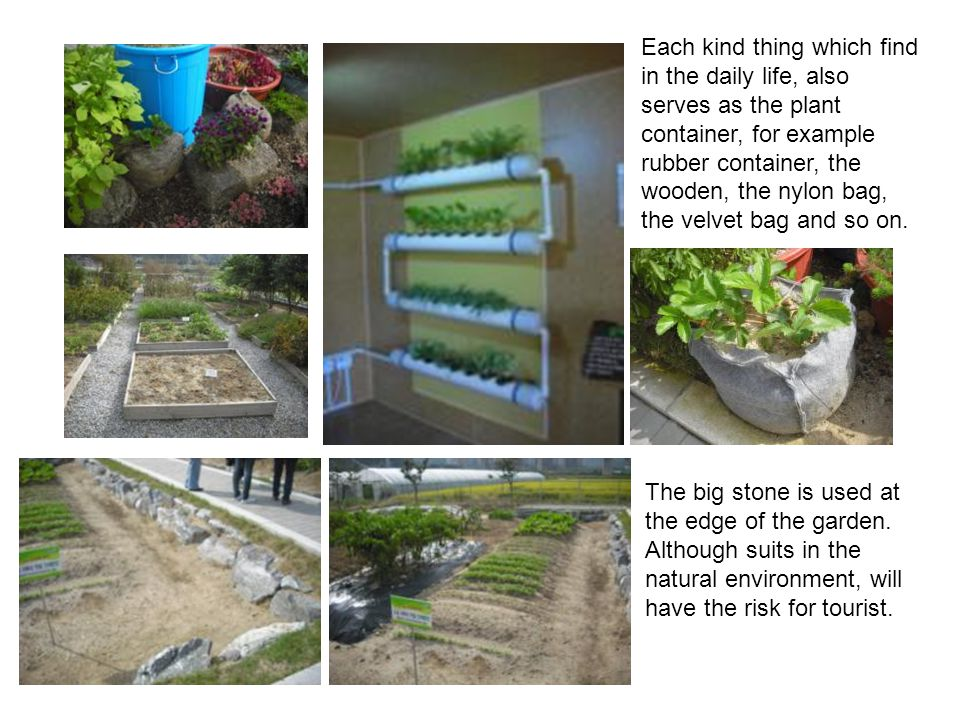 Heavenly Hospital's horticulture therapy garden is at the roof.