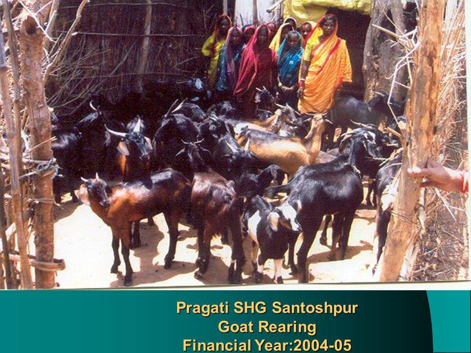 Pragati SHG Santoshpur Goat Rearing Financial Year:2004-05