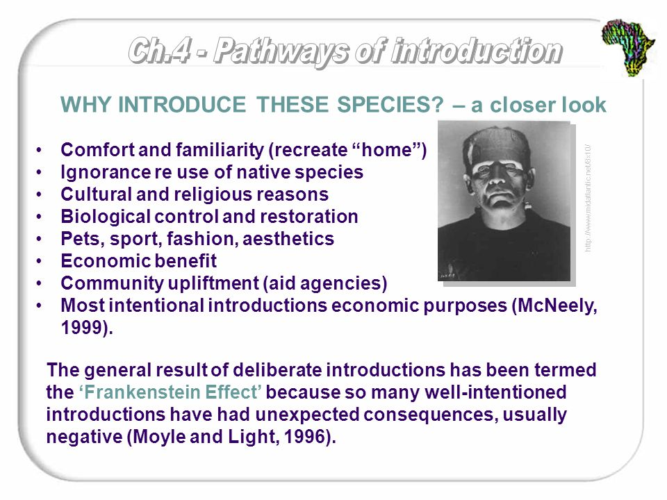 Comfort and familiarity (recreate home ) Ignorance re use of native species Cultural and religious reasons Biological control and restoration Pets, sport, fashion, aesthetics Economic benefit Community upliftment (aid agencies) Most intentional introductions economic purposes (McNeely, 1999).