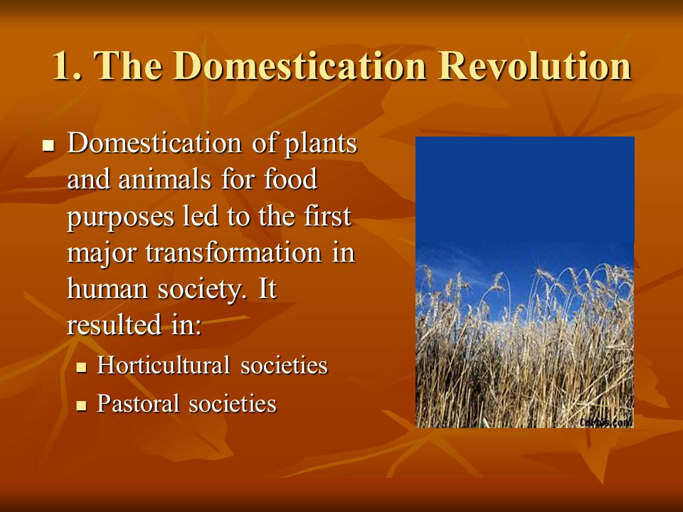 1. The Domestication Revolution Domestication of plants and animals for food purposes led to the first major transformation in human society. It resul