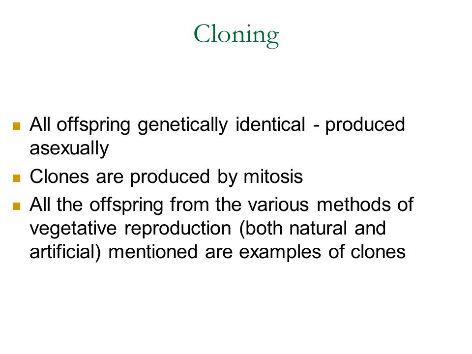 Cloning All offspring genetically identical - produced asexually Clones are produced by mitosis All the offspring from the various methods of vegetati