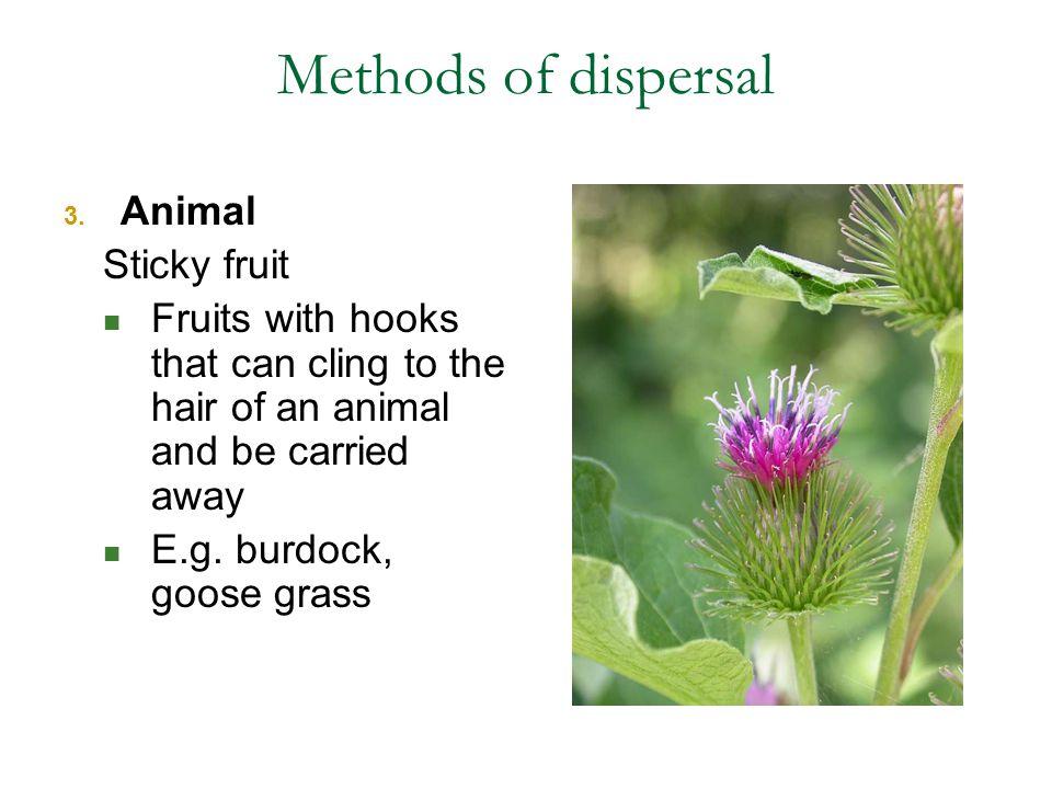 Methods of dispersal 3.