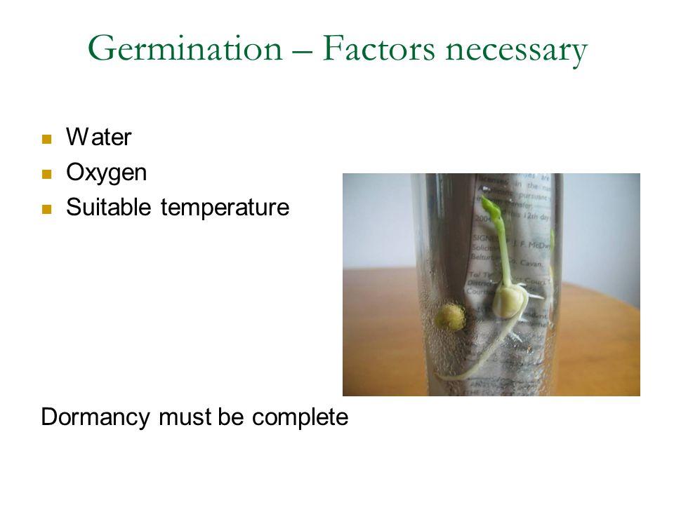 Germination – Factors necessary Water Oxygen Suitable temperature Dormancy must be complete