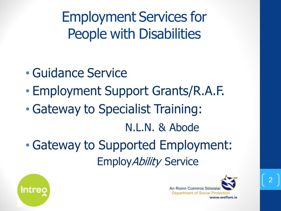 Employment Services for People with Disabilities Guidance Service Employment Support Grants/R.A.F. Gateway to Specialist Training: N.L.N. & Abode Gate