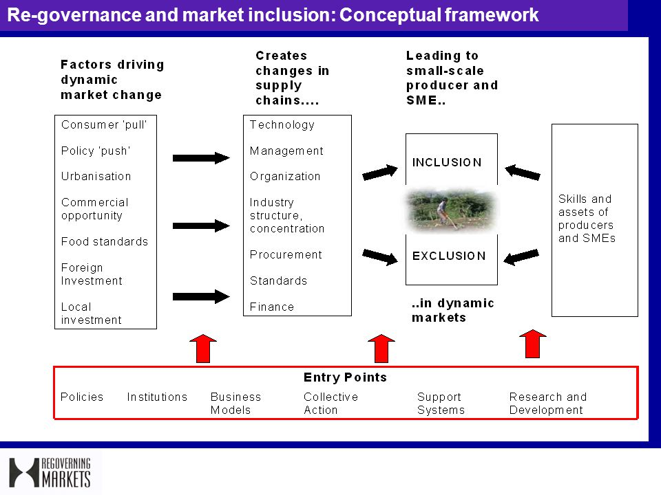 Re-governance and market inclusion: Conceptual framework