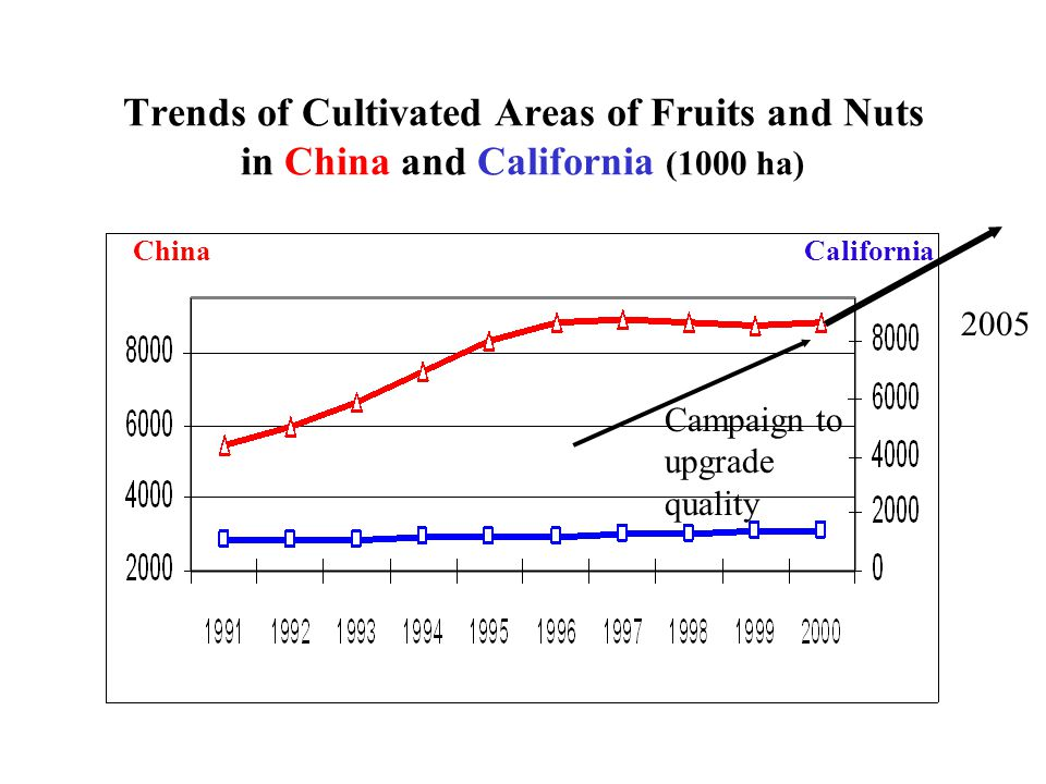 Trends of Cultivated Areas of Fruits and Nuts in China and California (1000 ha) CaliforniaChina Campaign to upgrade quality 2005