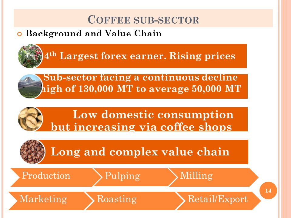 C OFFEE SUB - SECTOR Background and Value Chain 14 ProductionPulpingMillingMarketing 4 th Largest forex earner.