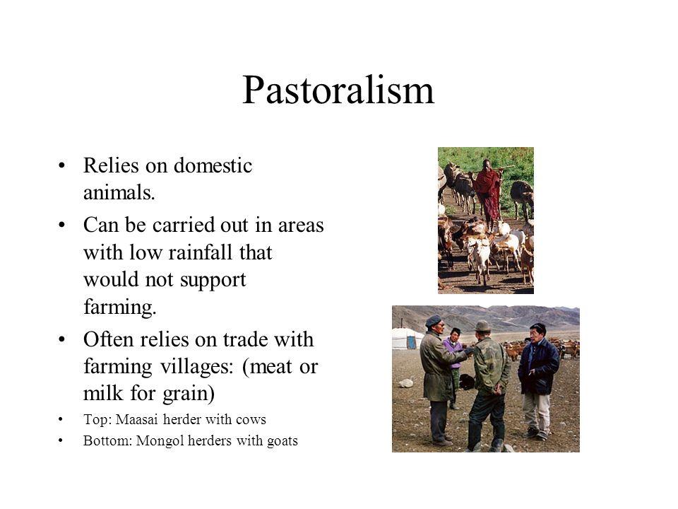 Pastoralism Relies on domestic animals.