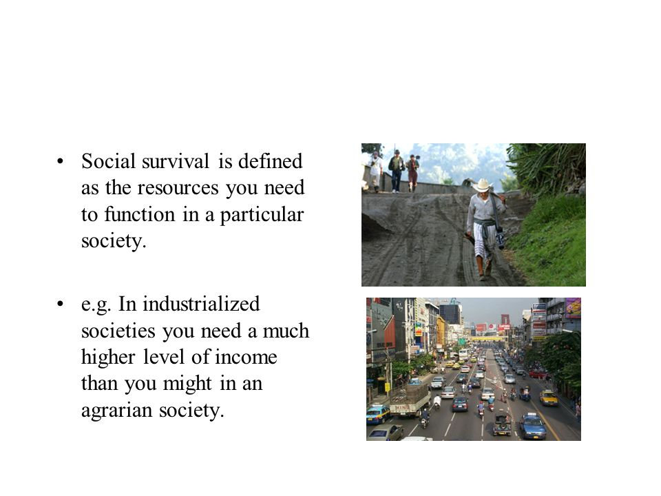 Social survival is defined as the resources you need to function in a particular society.