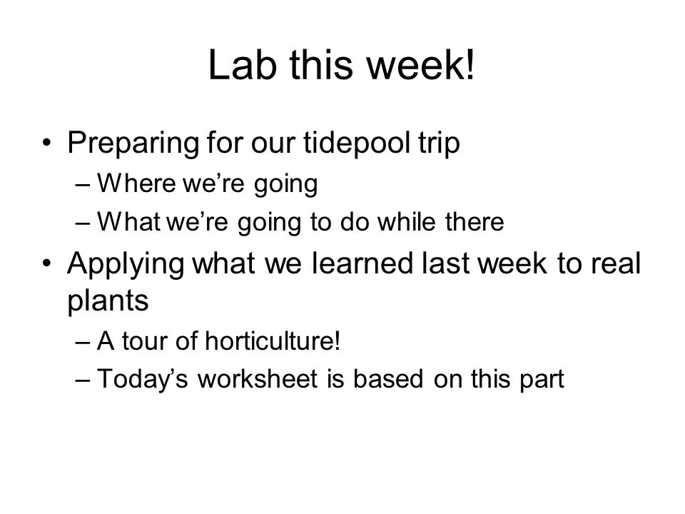 Lab this week! Preparing for our tidepool trip –Where we're going –What we're going to do while there Applying what we learned last week to real plant