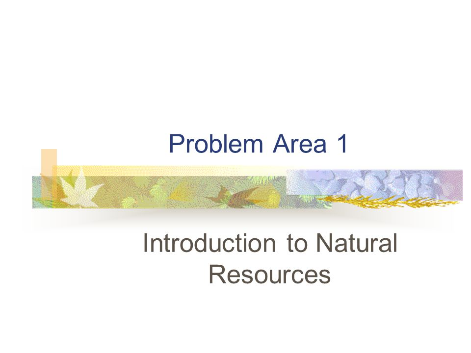 Problem Area 1 Introduction to Natural Resources