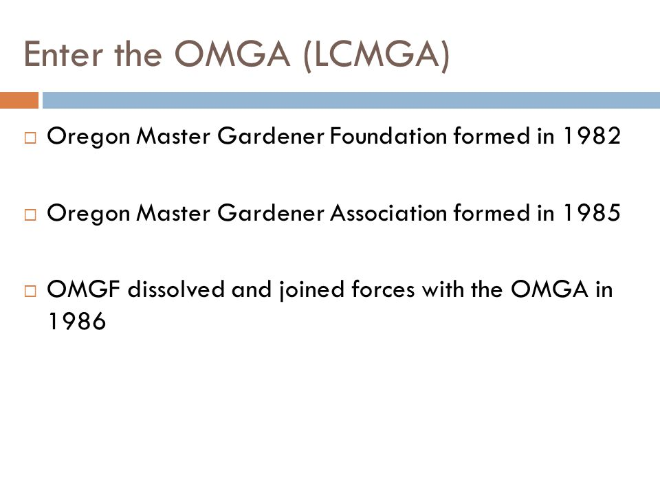 Enter the OMGA (LCMGA)  Oregon Master Gardener Foundation formed in 1982  Oregon Master Gardener Association formed in 1985  OMGF dissolved and joined forces with the OMGA in 1986