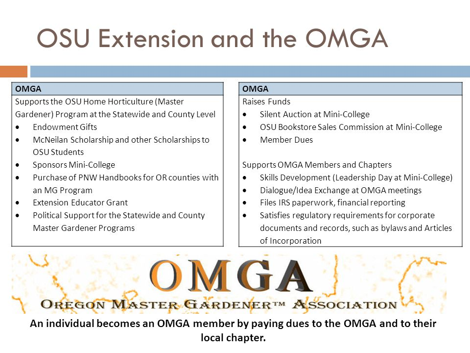 OSU Extension and the OMGA OMGA Supports the OSU Home Horticulture (Master Gardener) Program at the Statewide and County Level  Endowment Gifts  McNeilan Scholarship and other Scholarships to OSU Students  Sponsors Mini-College  Purchase of PNW Handbooks for OR counties with an MG Program  Extension Educator Grant  Political Support for the Statewide and County Master Gardener Programs OMGA Raises Funds  Silent Auction at Mini-College  OSU Bookstore Sales Commission at Mini-College  Member Dues Supports OMGA Members and Chapters  Skills Development (Leadership Day at Mini-College)  Dialogue/Idea Exchange at OMGA meetings  Files IRS paperwork, financial reporting  Satisfies regulatory requirements for corporate documents and records, such as bylaws and Articles of Incorporation An individual becomes an OMGA member by paying dues to the OMGA and to their local chapter.