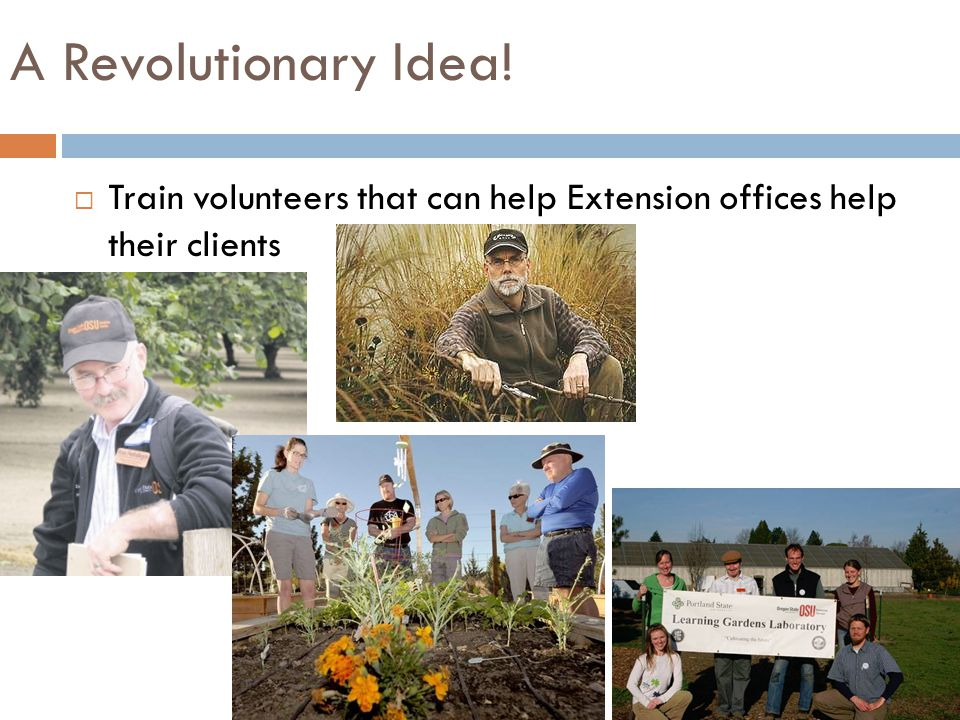  Train volunteers that can help Extension offices help their clients