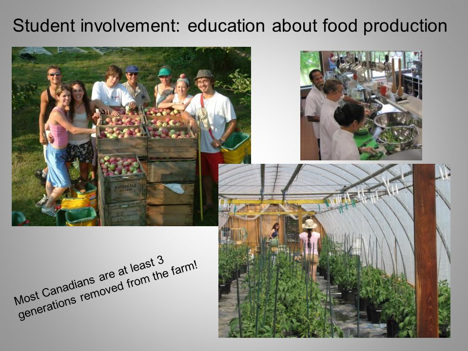 Student involvement: education about food production Most Canadians are at least 3 generations removed from the farm!