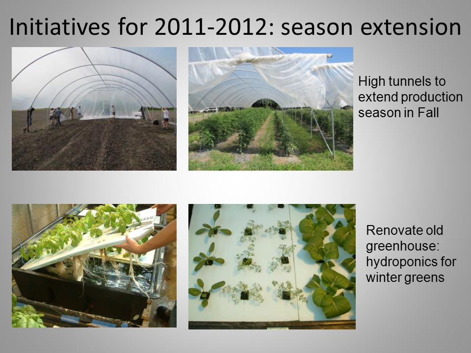 Initiatives for 2011-2012: season extension High tunnels to extend production season in Fall Renovate old greenhouse: hydroponics for winter greens