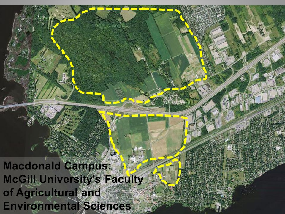 Macdonald Campus: McGill University's Faculty of Agricultural and Environmental Sciences