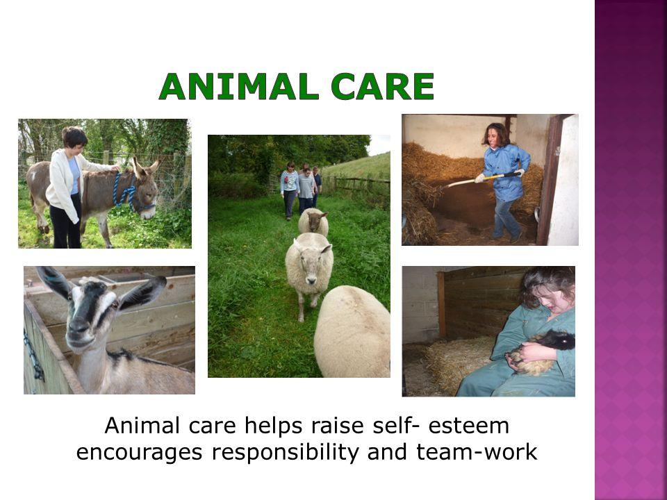 Animal care helps raise self- esteem encourages responsibility and team-work