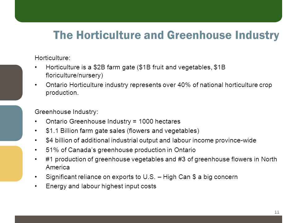 11 The Horticulture and Greenhouse Industry Horticulture: Horticulture is a $2B farm gate ($1B fruit and vegetables, $1B floriculture/nursery) Ontario Horticulture industry represents over 40% of national horticulture crop production.