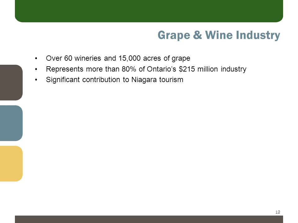 12 Grape & Wine Industry Over 60 wineries and 15,000 acres of grape Represents more than 80% of Ontario's $215 million industry Significant contribution to Niagara tourism