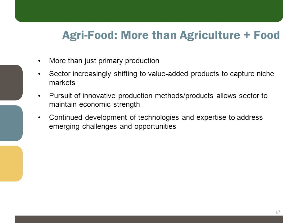 17 Agri-Food: More than Agriculture + Food More than just primary production Sector increasingly shifting to value-added products to capture niche markets Pursuit of innovative production methods/products allows sector to maintain economic strength Continued development of technologies and expertise to address emerging challenges and opportunities