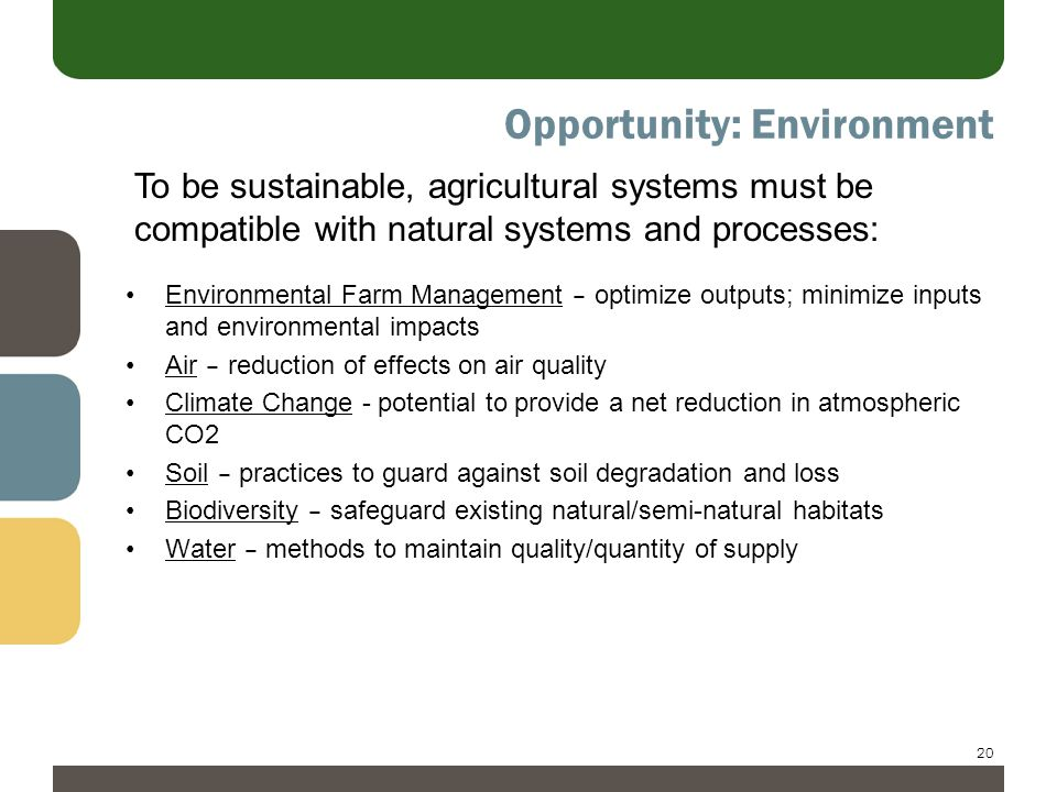20 Opportunity: Environment Environmental Farm Management – optimize outputs; minimize inputs and environmental impacts Air – reduction of effects on air quality Climate Change - potential to provide a net reduction in atmospheric CO2 Soil – practices to guard against soil degradation and loss Biodiversity – safeguard existing natural/semi-natural habitats Water – methods to maintain quality/quantity of supply To be sustainable, agricultural systems must be compatible with natural systems and processes: