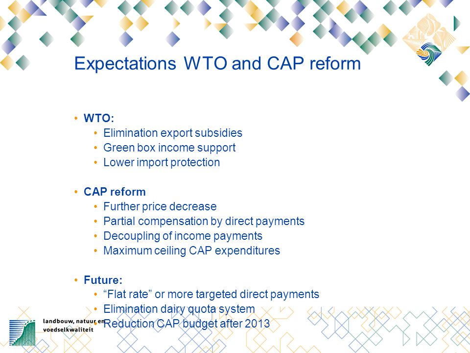 Expectations WTO and CAP reform WTO: Elimination export subsidies Green box income support Lower import protection CAP reform Further price decrease P