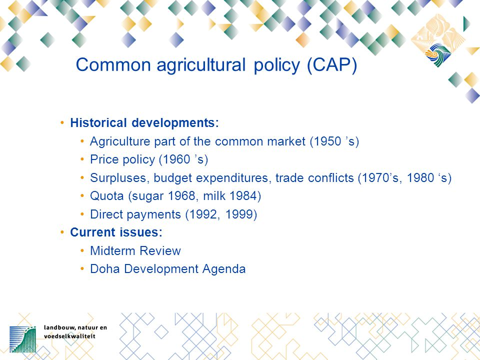 Midterm Review 2003 Decoupled income payments: Single farm payment independent of production Based on payments reference period 2000-2002 Payment linked to conditions: Environment, food safety, animal and plant health, animal welfare standards Keeping agricultural land in good condition Financial discipline: 1 % nominal increase CAP budget 2006-2013 Price decrease and single farm payment milk Strengthened rural development policy