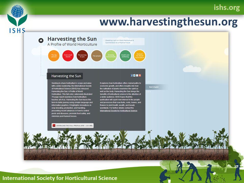 www.harvestingthesun.org