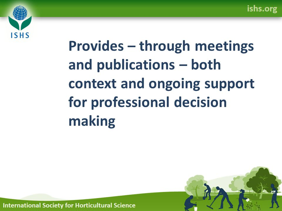 Provides – through meetings and publications – both context and ongoing support for professional decision making