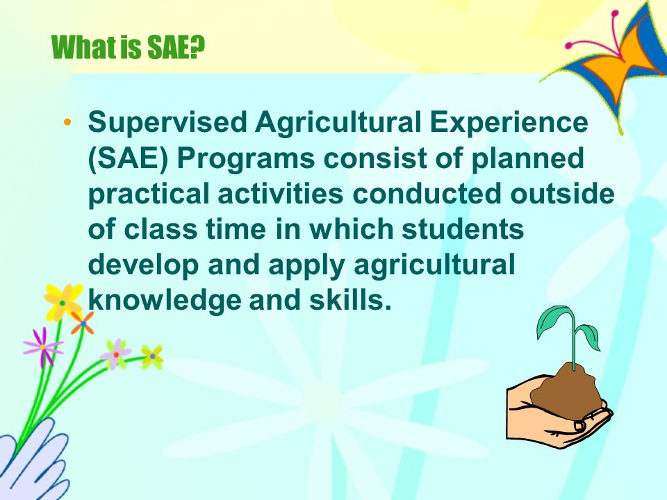 Gaining Experience!! Question: How can you gain experience to get a job (or prepare for college)? Answer: Supervised Agricultural Experience (SAE)