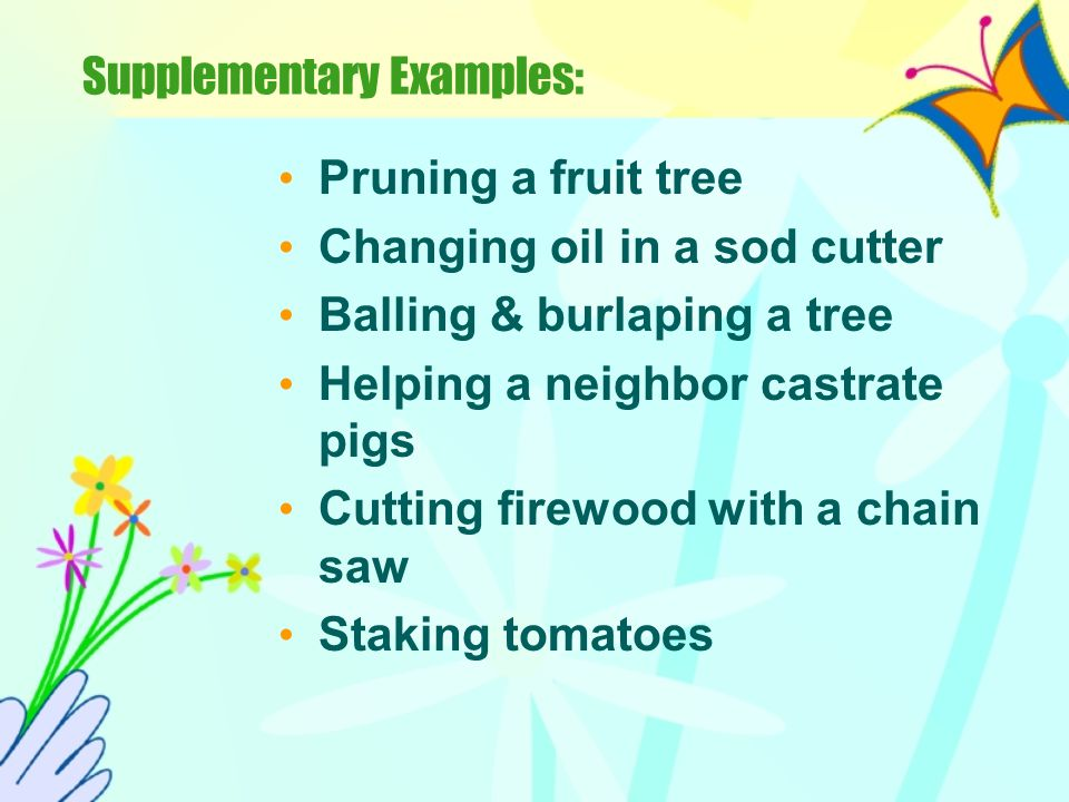 Supplementary (Minor) A supplementary activity is one where the student performs one specific agricultural skill outside of normal class time. This sk