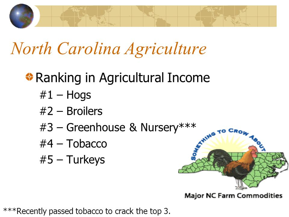 North Carolina Agriculture North Carolina is ranked in the top 10 nationally in the following commodities. Apples Cotton Grapes Tomatoes Watermelons T