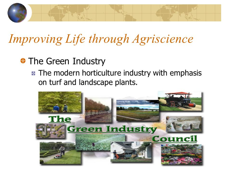 Improving Life through Agriscience The Green Revolution Process whereby many countries became self sufficient in food production in the 1960s by using