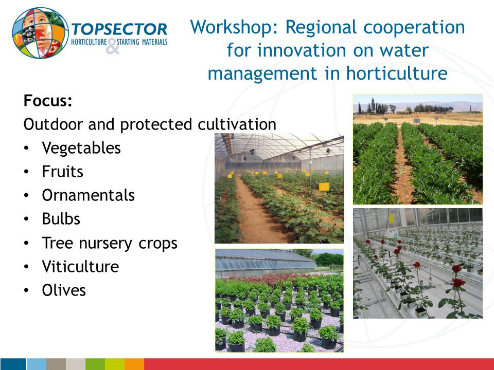 Workshop: Regional cooperation for innovation on water management in horticulture Focus: Outdoor and protected cultivation Vegetables Fruits Ornamentals Bulbs Tree nursery crops Viticulture Olives