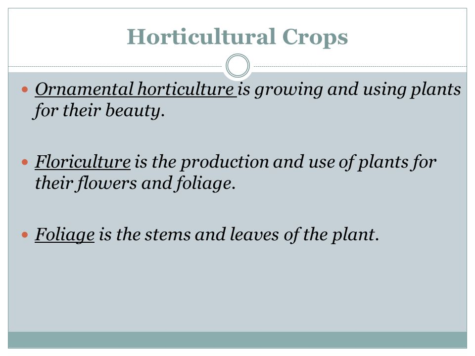 Horticultural Crops Ornamental horticulture is growing and using plants for their beauty. Floriculture is the production and use of plants for their f