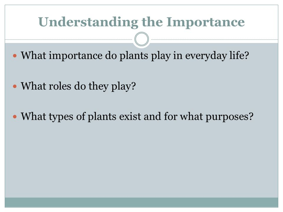 Understanding the Importance What importance do plants play in everyday life? What roles do they play? What types of plants exist and for what purpose