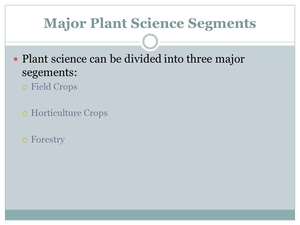 Major Plant Science Segments Plant science can be divided into three major segements:  Field Crops  Horticulture Crops  Forestry
