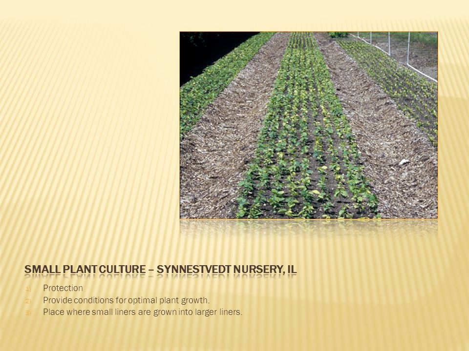 1) Protection 2) Provide conditions for optimal plant growth.