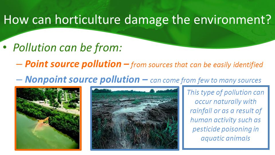 How can horticulture damage the environment.
