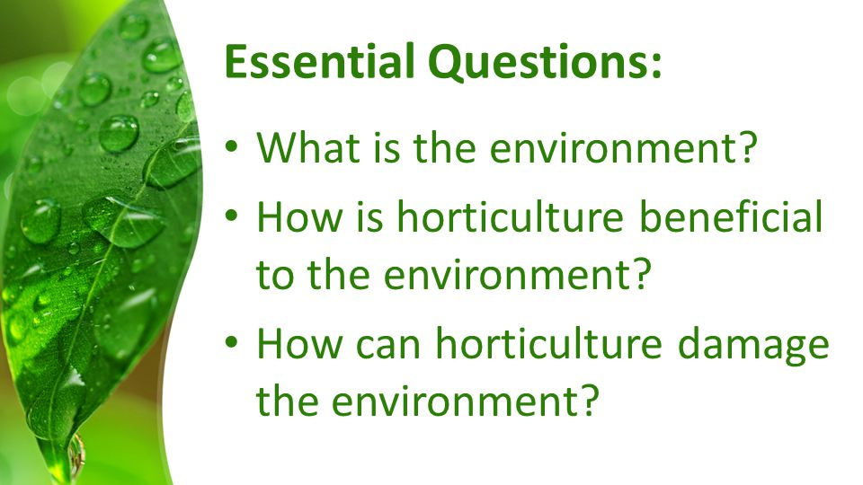 Essential Questions: What is the environment? How is horticulture beneficial to the environment? How can horticulture damage the environment?