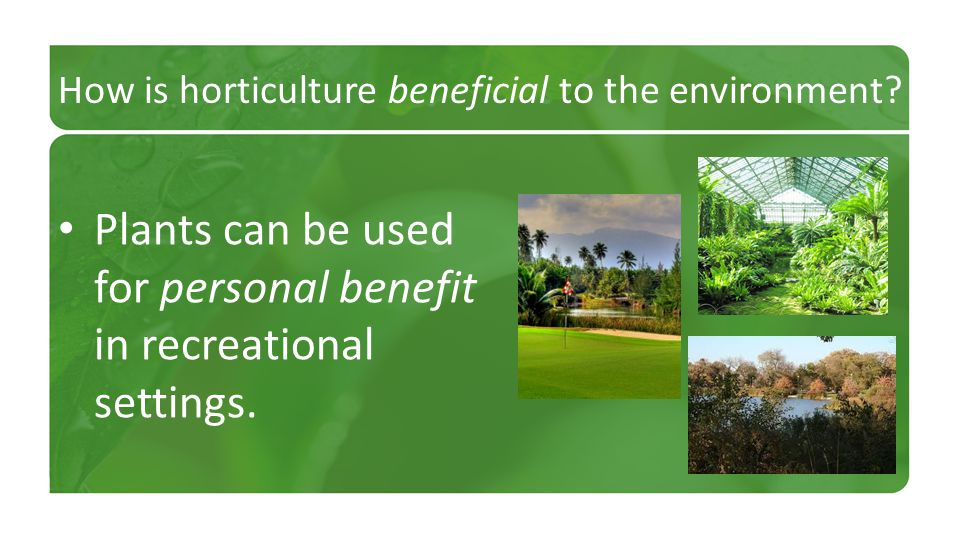 How is horticulture beneficial to the environment? Plants can be used for personal benefit in recreational settings.