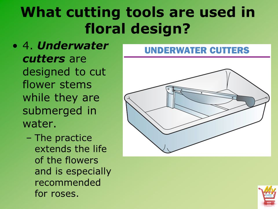 4. Underwater cutters are designed to cut flower stems while they are submerged in water.