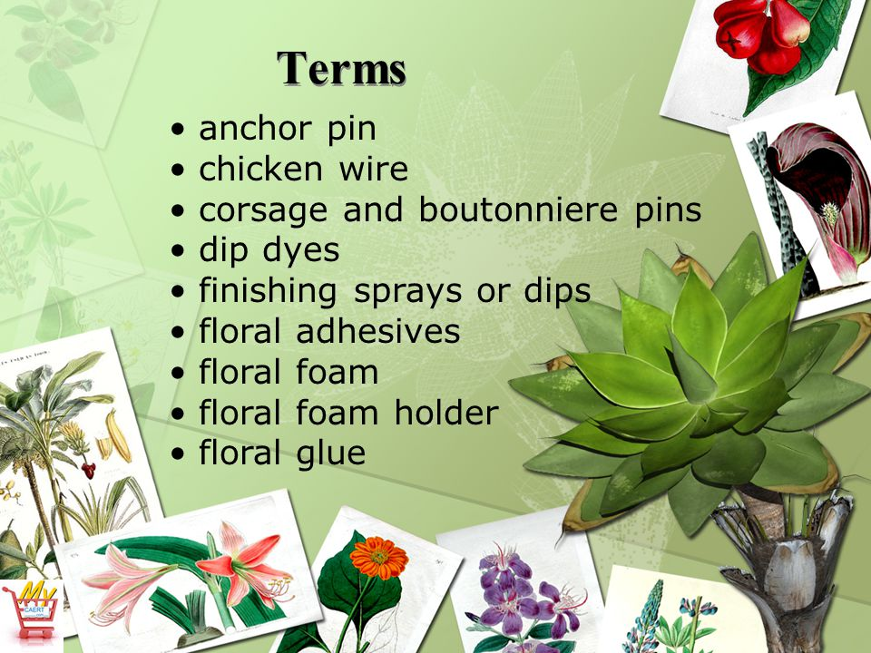 Terms floral sprays floral tape floral tints florist knives florist shears florist wire foil glitter sprays greening pin