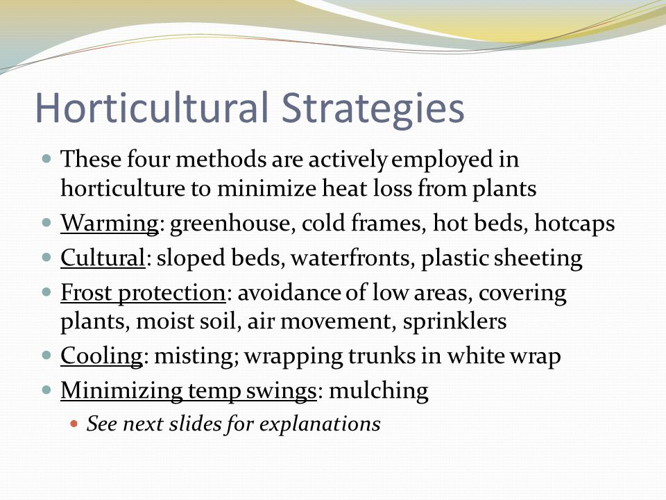 Horticultural Strategies These four methods are actively employed in horticulture to minimize heat loss from plants Warming: greenhouse, cold frames, hot beds, hotcaps Cultural: sloped beds, waterfronts, plastic sheeting Frost protection: avoidance of low areas, covering plants, moist soil, air movement, sprinklers Cooling: misting; wrapping trunks in white wrap Minimizing temp swings: mulching See next slides for explanations